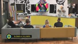 ValóVilág powered by Big Brother : ValóVilág10 101. rész