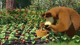 Maša i medvjed : Epizoda 6 / Sezona 1