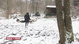 Images à l'appui : Les castors provoquent des inondations qui menaçent une maison (12/04)