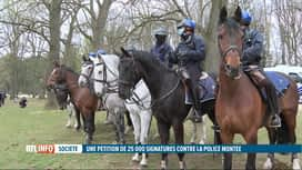 RTL INFO 13H : Une pétition demande la suppression de la police montée à cheval