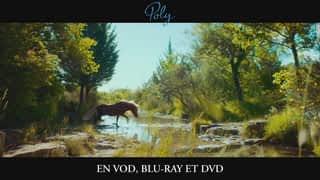 Poly - Disponible en VOD, Blu-Ray et DVD