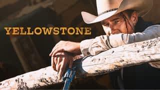 Yellowstone, série inédite à découvrir sur SALTO !