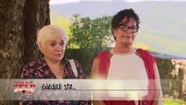 Ljubav je na selu : Epizoda 18 / Sezona 13