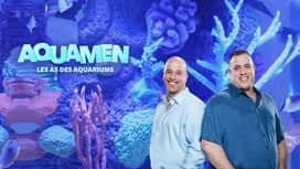 Aquamen : les as des aquariums en replay