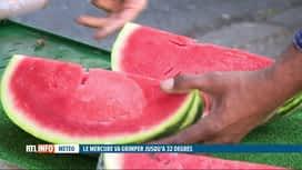 RTL INFO 13H : Chaleur: les ventes de fruits rafraîchissants progressent