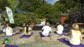 Yoga Day : Yoga Day 2021
