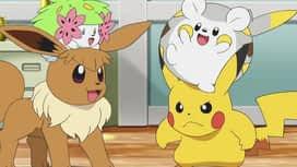 Pokemon : S22E35 De vieux souvenirs et de nouveaux rêves !