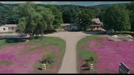 Svi na Woodstock : Svi na Woodstock