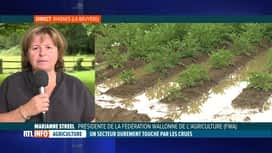 RTL INFO 13H : Inondations: Marianne Streel, FWA, évoque les dégâts subis par les ...