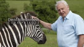 David Attenborough: Čuda prirode en replay