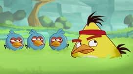 Angry Birds : Epizoda 2 / Sezona 1