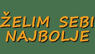 Program - logo - 16681