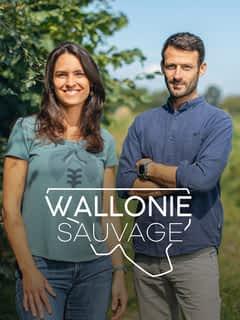 Wallonie Sauvage