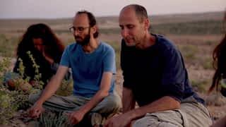 La Silicon Wadi, en Israël