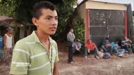 Enquête exclusive : Enfants migrants : prêts à tout pour vivre le rêve américain