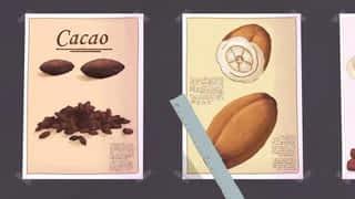 Embrouilles au chocolat