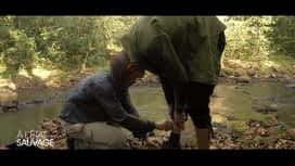 À l'état sauvage : Matt Pokora se fait attaquer par les sangsues !