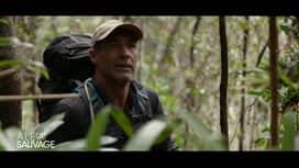À l'état sauvage : Comment Mike Horn a perdu son doigt