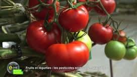 E = M6 spécial Nutrition : Fruits et légumes : les pesticides sont-ils remplaçables ?