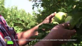E = M6 spécial Nutrition : Comment les producteurs réduisent l'usage des pesticides !
