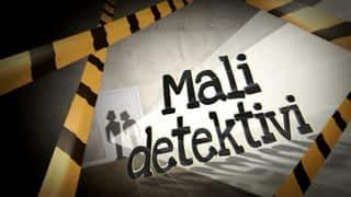 Mali detektivi
